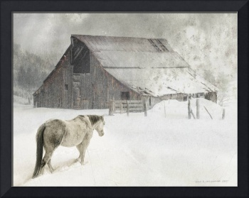 cherry creek barn and horse