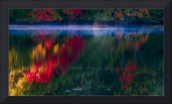 New England Fall Abstract