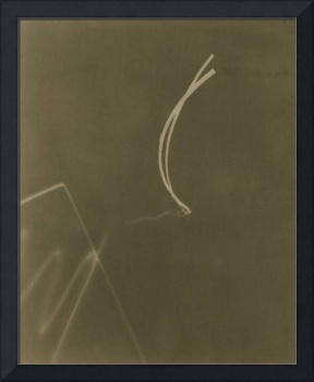 cameraless photograph brown photogram
