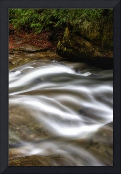 Form in Stream by Jim Crotty