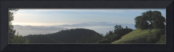 City from Mt. Tam