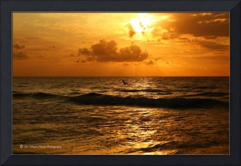 Golden Sunrise: Carolina Beach NC