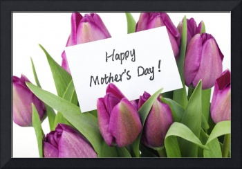 Happy Mothers Day! Purple Tulips