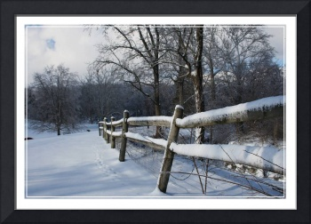 winter fence 2