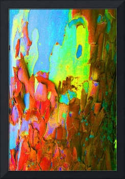 Abstract Sycamore Trunk #1