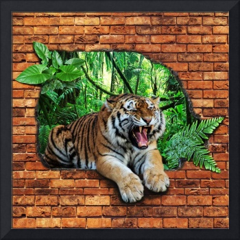 Tiger - Window To The Jungle