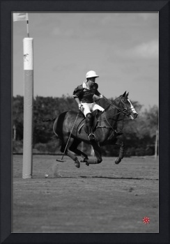 Gonzalito Pieres 10 Goal Polo Player