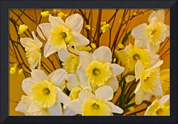 Cheerful Warmth of Spring