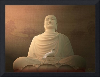 Buddha and the Dove