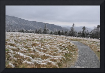 Frosted Bald 5/Appalachian Trail