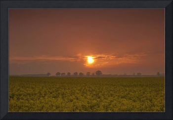 The Red Glow Of A Sunset Over A Field Northumberl