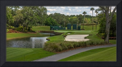 TPC Sawgrass Golf Course Hole 13 Photo 1 Wide