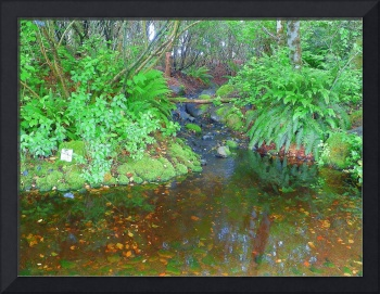 Photography Art Times And Miles Spent In Nature