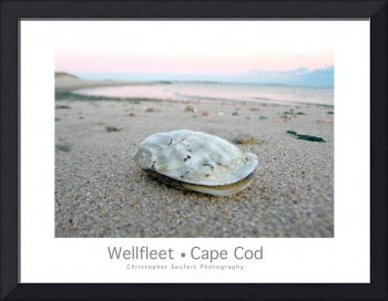 Wellfleet, Cape Cod Poster (Oyster Version)