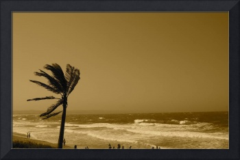 Golden Durban Beach