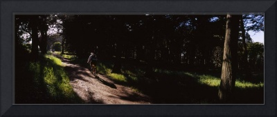 Rear view of a cyclist on a dirt road