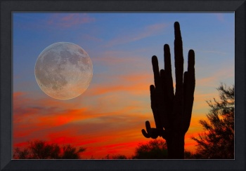 Full Moon Saguaro Arizona Sunset