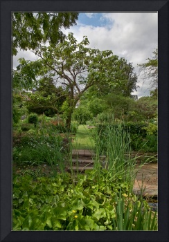 In the Physic Garden, Chelsea 22