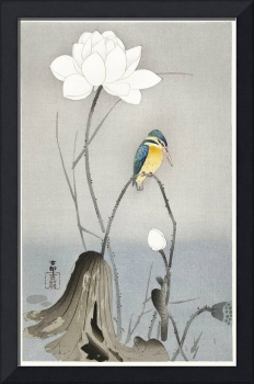 Kingfisher with Lotus Flower by Ohara Koson