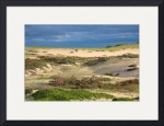 Cape Cod Dune Lands by Christopher Seufert