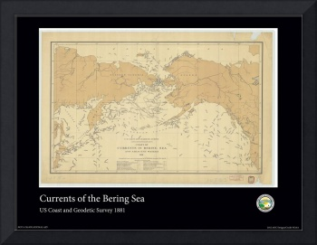Bering Sea Currents 1881