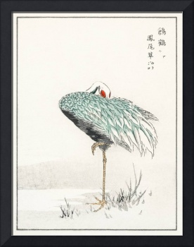 White-Naped Crane and New Years Fernby Numata Kash