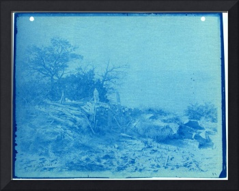Landscape, Cyanotype Photograph by Thomas Smillie