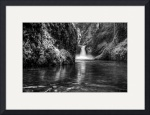 Black and White Punchbowl by Marylynne Diggs