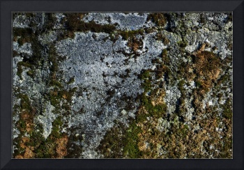 Abstract Concrete Close-up Texture photograph 0360