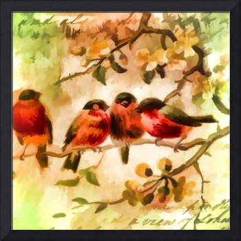 Four Songbirds