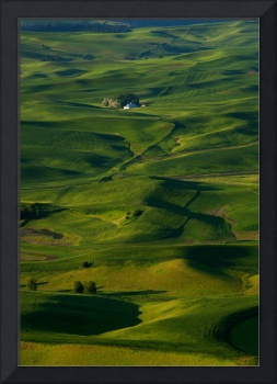 Palouse Green