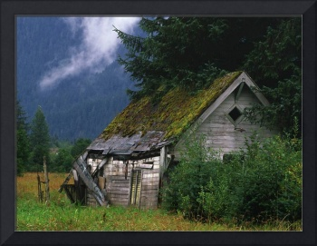 SHED in Field
