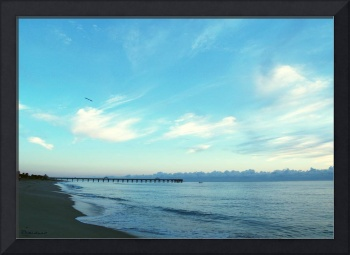 Seascape Juno Beach Florida Pier C8