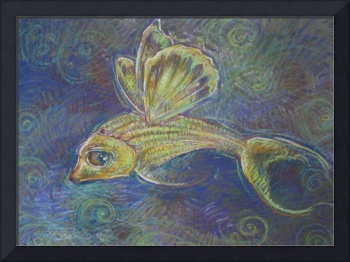 golden flying fish