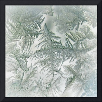 Frost Abstract
