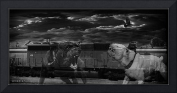 Ghost Dogs of Engine 3755