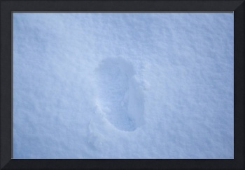 Single Foot Print in the Snow