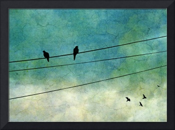 Distance (Two Birds On One Wire)