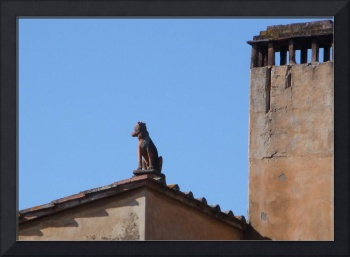 Certaldo Roof Top Dog