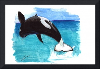 orca breaching done with watercolor