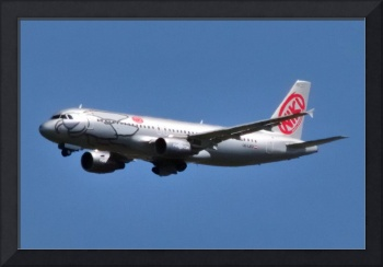 Niki, A320, OE-LEO, Another Airline Gone