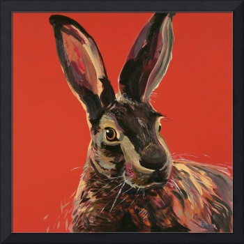 Hare Red