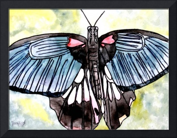 butterfly macro watercolor painting