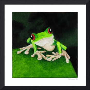 Green Tree Frog 2