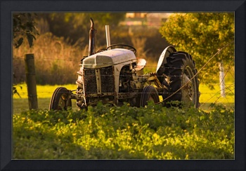 Old Tractor at Sunrise B011100_1001390