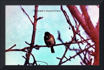 BeFunky_bird in tree PIC 1492A
