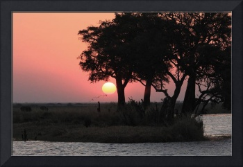 Chobe River Sunset-Botswana 5814