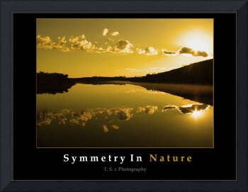 Symmetry In Nature