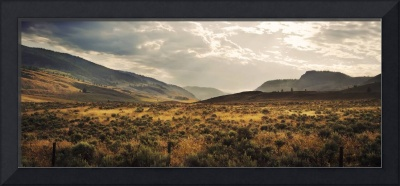 Field of Sagebrush,  Okanagan valley photograph