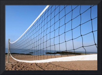 Volleyball Anyone